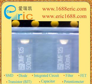 3404.0045.22/快速熔断保险丝管/125V 0.5A/2512-0.5A/SCHURTER