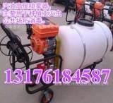 汽油喷雾器 汽油喷雾机 养殖消毒机;
