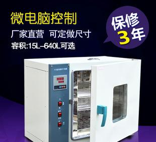 DHG202/101 series electric heating constant temperature air blast drying oven industrial oven