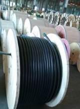DJYJP3VP3/32-6X2X1.5屏蔽钢丝铠装仪表电缆|计算机电缆;