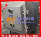 菠萝蜜真空冷冻干燥机 冻干机专业生产企业-云泰干燥精工制造;