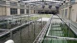 水质监测仪、水质监测仪、水质在线监测、水产养殖水质检测;