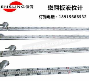 магнитный материал Аутентичные всей сети минимальной UFS указателе магнитный измеритель уровня утопленника 304 316l высококачественных материалов