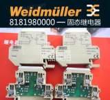 正品 魏德米勒 固态继电器 8181980000 DKR 35 24VDC 1U 大功率;