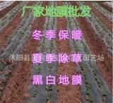 厂家塑料薄膜批发 白色地膜 黑色地膜批发 育苗 种植 防草通用;