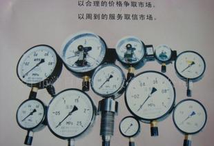 l供应压力表测压仪表系列.用于石油.化工.电力.轻纺.行业压力表。;