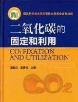 与炔烃/二卤代物的缩聚反应-二氧化碳的固定和利用;