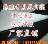 批发塑料大棚膜 黑白膜 农膜遮阳膜12S养殖黑白塑料薄膜2-14米宽;