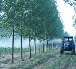 3WG-T70大拖拉机背负式喷雾器 玉米打药机;
