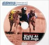 厂家承接高档CD,DVD,蓝光 光盘制作/光盘印刷/光盘压制/光盘刻录;
