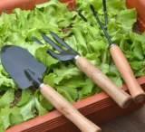 大号园艺工具三件套装园林阳台种菜花盆养花铲子耙子三齿叉铁质;
