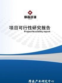 焊接和粘接项目立项报告(摩森泓域·专业可研)