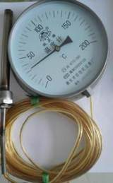 厂家批发不锈钢压力式温度计电接点压力式温度计型号WTZ-280;