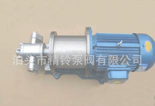 Direct manufacturers KCG-3 high temperature magnetic pump / Botou high temperature magnetic pump