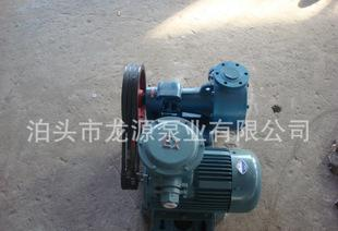 Longyuan pump industry specializing in the production of high viscosity pump NCB high viscosity pump rotor