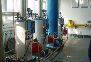 供应成套沼气锅炉设备,脱硫、脱水、增压、减压。燃烧控制、并网;