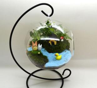 厂家直销玻璃瓶微景观 苔藓微景观生态瓶 吹制造景玻璃瓶;