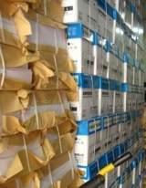 提供8K、16K70克胶版纸、卷子纸;