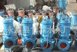 直営WQ潜水ポンプQW潜水汚染物質排出ポンプ汚水ポンプ無渋滯潜水ポンプ潜水汚染物質排出ポンプ