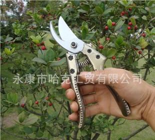 新款 园艺剪刀 修枝剪粗枝剪 花木修剪刀 摘果剪绿篱剪 整枝剪;