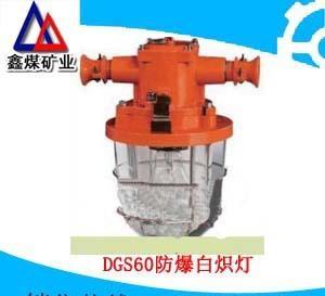 DGS60防爆白炽灯,DGS-60/127原KBB系列隔爆型白炽灯;