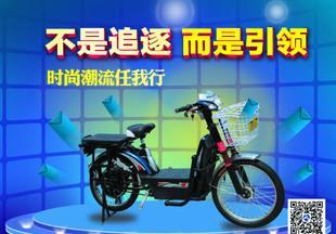 厂家知道电动车 电动自行车 48V500W大功率大骆驼电动车;
