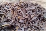 聊城厂家销售 废钢;