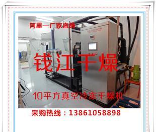 5平方冻干机 10平方真空冷冻干燥机价格 蔬菜冻干机 冻干设备;