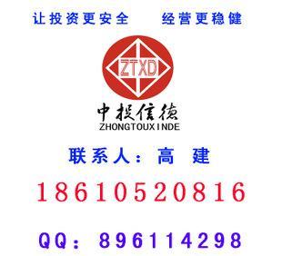 氮化锰铁合金项目建议书;