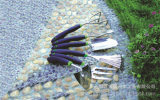 6件套多功能不锈钢园林工具 花园工具组套 户外工具组套 家居用品;