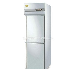 厂家销售商用冰箱 二门冷冻柜 二门冷藏冷冻柜 低温冰箱 批发;