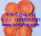 厂家批发片条状、颗粒状DW型带式干燥机 蔬菜干燥机 带式干燥设备