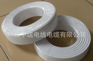 供应广东电线电缆HYA电话线;