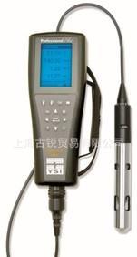 现货供应 美国YSI ProPlus便携式多参数水质测定仪分析仪 溶氧仪;