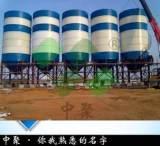 大型散裝混凝土儲罐_水泥儲運設備_混凝土攪拌混合專用攪拌罐;